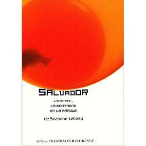 Livre 6-9 ANS Salvador. La montagne, l'enfant et la mangue