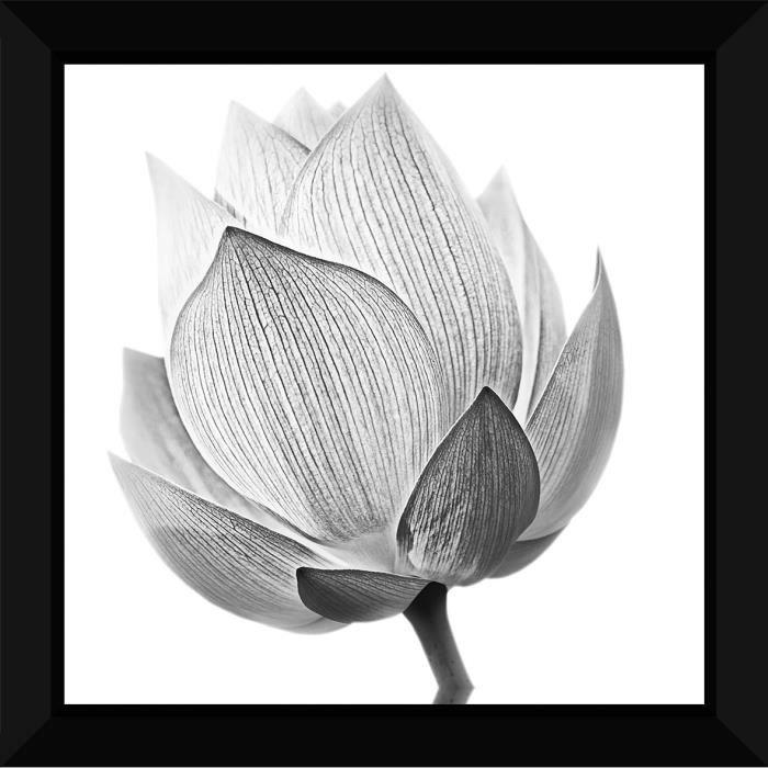 tableau d co encadr 60x60 fleur noir et blanc achat vente tableau toile cdiscount. Black Bedroom Furniture Sets. Home Design Ideas