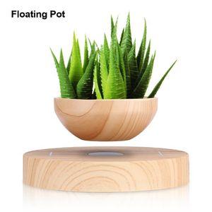 VASE - SOLIFLORE Pot flottant de fleur plantes Lévitation magnétiqu