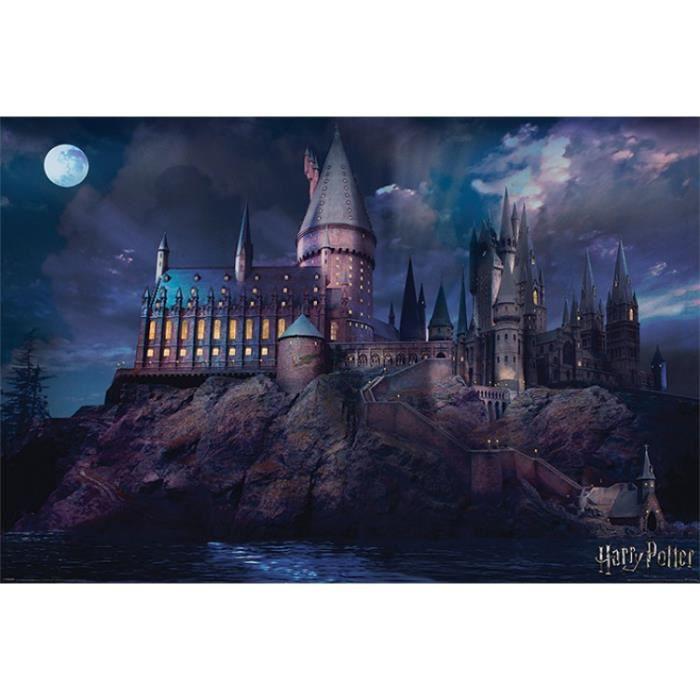 Poudlard Harry Potter peint à la main Converse   HARRY