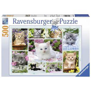 PUZZLE Puzzle 500 pcs Chatons Dans Leurs Corbeille