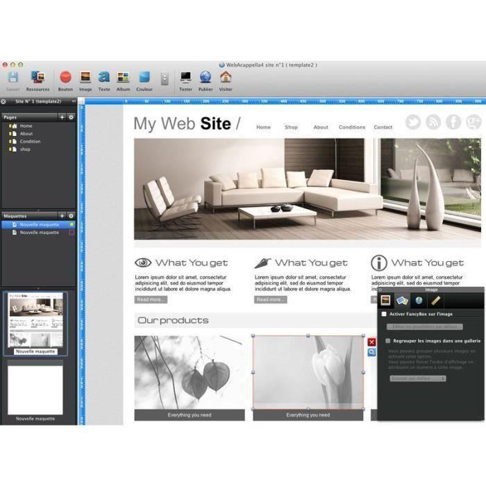 LOGICIEL À TÉLÉCHARGER WebAcappella Professional (PC)