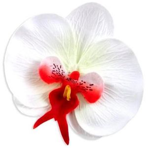 orchidee rouge artificielle - achat / vente orchidee rouge