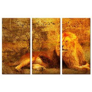 TABLEAU - TOILE Tableau Déco Triptyque Lion Sauvage - 120x80 cm