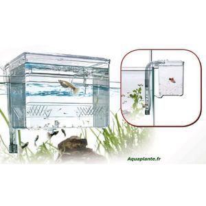 AQUARIUM Easy Breeding Box
