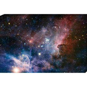 TABLEAU - TOILE Espace Et Univers Reproduction sur Toile - La Nais