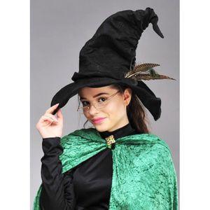 Assistant sorcière chapeau halloween déguisement robe tri livre film personnage accessoire