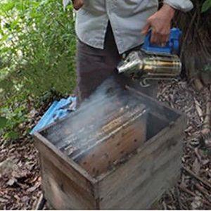 CHASSE - PIÈGE INSECTES Grand matériel d'apiculture de fumeur de ruche d'a