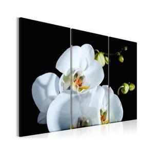 TABLEAU - TOILE Tableau Orchidée Blanche Comme Neige - Dimension -
