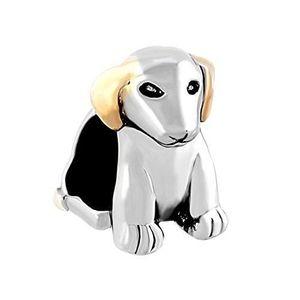 Charm's Amour Lovely femmes Deux bijoux ton Cute Pet Dog B