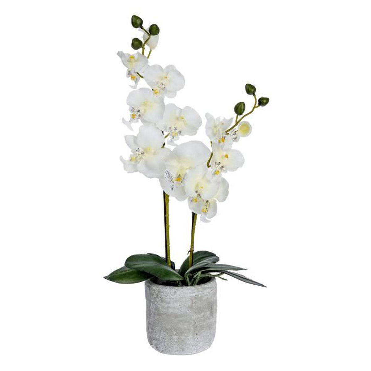 orchid e artificielle cr me en pot en b ton gris 53 cm achat vente fleur artificielle. Black Bedroom Furniture Sets. Home Design Ideas