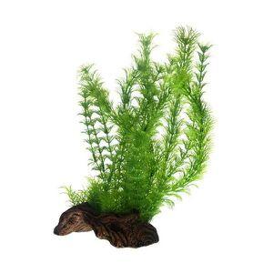 DÉCO ARTIFICIELLE Hobby Flora Root L 3