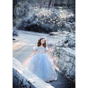 DÉGUISEMENT - PANOPLIE Robe Déguisement fille les reines des neiges Froze