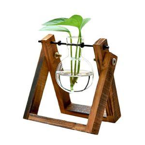 VASE - SOLIFLORE Vase transparent pour plantes hydroponiques Vase à