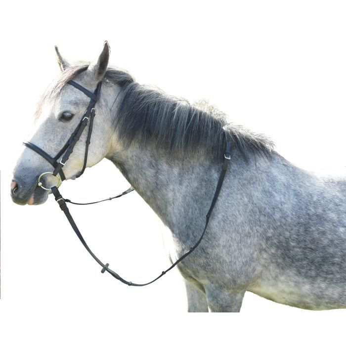 Cheval  -  BRIDON CUIR HUILE CHEVAL ST