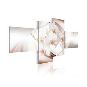 TABLEAU - TOILE Tableau Orchidée La Plus Belle Fleur Du Monde - Di