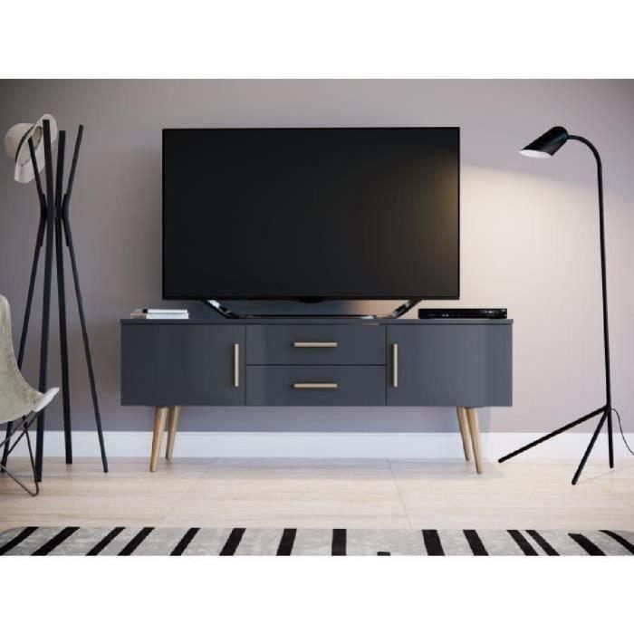 Panneaux de particules mélaminés gris mat - L 140 x P 40 x H 55 cm - 2 portes et 2 tiroirsMEUBLE TV - MEUBLE HI-FI