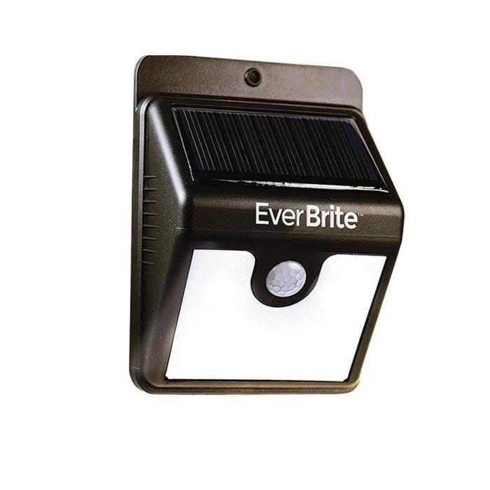 Lampe LED de surveillance avec détecteur de mouvement à énergie solaire Everbrite