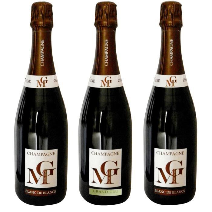 Champagne malard millesime 2009