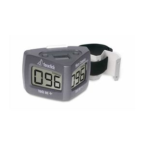 RAYMARINE Compas Micro Compass avec Étrier De Mât