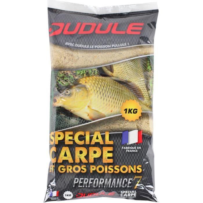 DUDULE Amorce Spécial Carpe 1kg