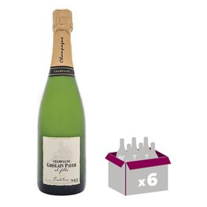CHAMPAGNE GHISLAIN PAYER & FILLE Champagne - Brut - 75 cl x