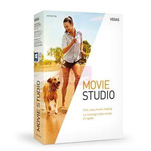 MULTIMÉDIA VEGAS Movie Studio 14