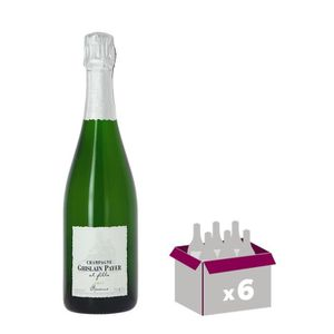 CHAMPAGNE GHISLAIN PAYER & FILLE Cuvé de Réserve Champagne -