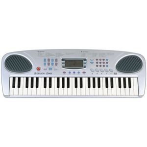 CLAVIER MUSICAL DELSON CK-49 Clavier 49 touches
