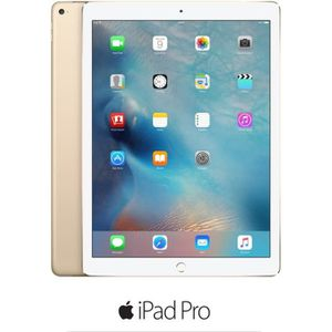 TABLETTE TACTILE Apple iPad Pro - MLMQ2NF/A - 9,7