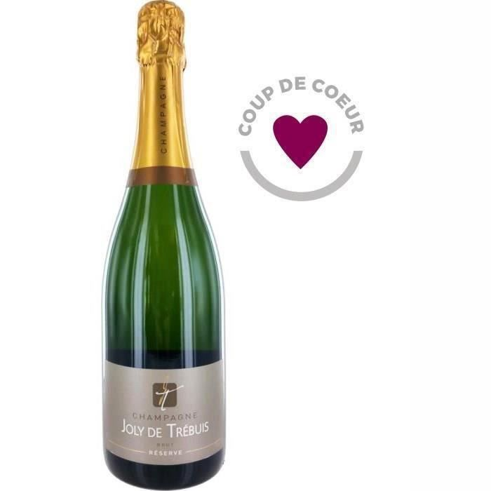 CHAMPAGNE Champagne Joly de Trébuis x1